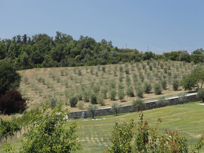 Agriturismo Lusso Umbria